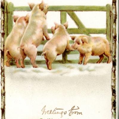 Post Card Guilford air 1910  113.jpg