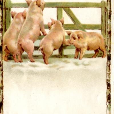 Post Card Guilford Fair 1909  111.jpg