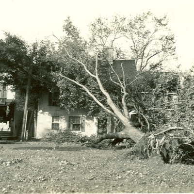 West side of Guilford Green after the Hurricane of 1938<br /><br />